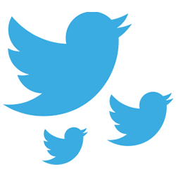 Twitter is a great avenue for generating leads and sales. You need to brand it right to get the best results