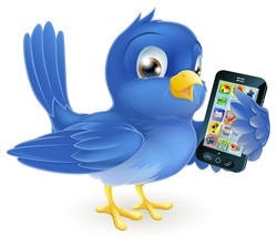 A bluebird holing a mobile phone. Use twitter to generate traffic for you website and leads and sales for you business